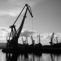 Grues dans le port de Mourmansk